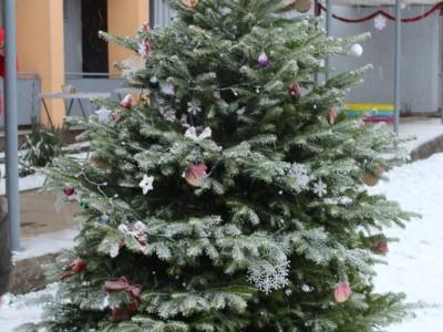 Rozsvietenie stromčeka v MŠ Ladce